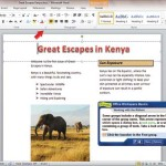 Word Lesson: Office Workspace Basics