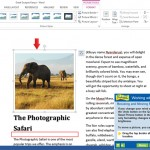 Word Lesson: Working with Graphics