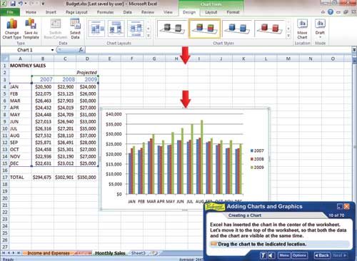 Professor Teaches Excel & Word 2010 | Individual Software